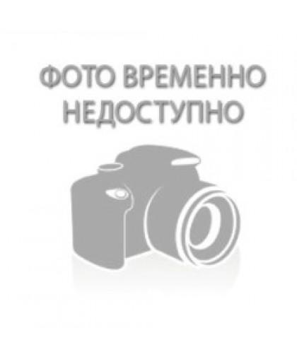 """Гербарий """"Основные закономерности явлений изменчивости"""""""