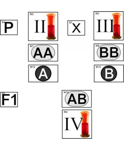 """Модель-аппликация """"Генетика групп крови"""""""