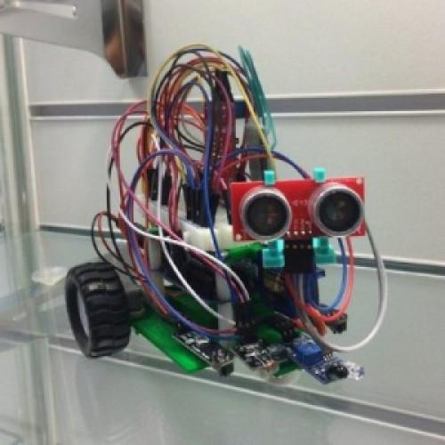 РОББО DIY робот Франки с набором расширений
